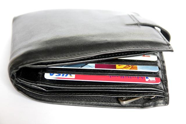 naditá pánská peněženka