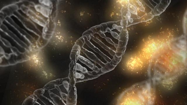 šedý řetězec DNA